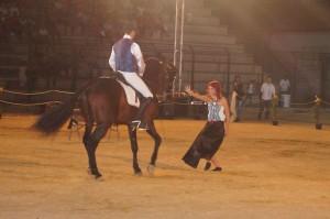 cavalli talenti