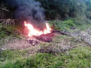 rame bruciato1