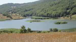 veduta lago Biviere1