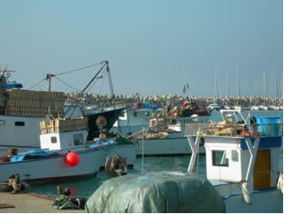 molo porto pesca