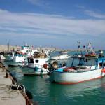 pesca porto sant'agata