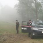 Furto aggravato di legna nel Parco, forestale arrestato