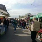 Dal 9 giugno torna il mercato settimanale. Da venerdì 5 il mercato del contadino.