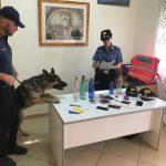 Blitz con i cani antidroga. Tre arresti dei Carabinieri