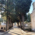 Pulizia e manutenzione al cimitero. 1 e 2 novembre tornano le auto elettriche