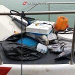 Pesca illegale, sequestrati 5 esemplari di pesce spada sotto misura