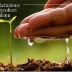 Una fiera agricola a Sant'Agata. La proposta della Federazione Agricoltori Siciliani