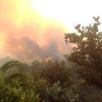 Prevenzione incendi, ordinanza per la pulizia dei terreni.