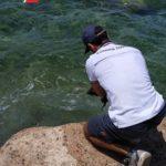 Sorpresi con 50 kg di pesce di specie protetta. Multati due pescatori sportivi.