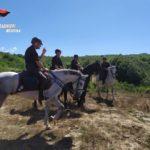 Parco dei Nebrodi, servizi dei Carabinieri a cavallo.