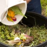 Compostaggio domestico rifiuti umidi, sconti del 30% in bolletta. Ecco come fare.