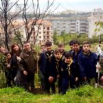Boy scout piantano 40 alberelli. Torna verde la collina distrutta dall'incendio.