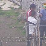 """Operazione """"Nebrodi"""", ecco chi sono i 94 arrestati."""
