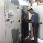 Controlli dei Carabinieri, tre denunce per violazioni nel settore agroalimentare.