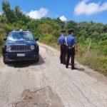 Reati ambientali nell'area del Parco dei Nebrodi. Quattro persone denunciate dai Carabinieri.