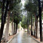 Commemorazione dei defunti, le modifiche alla viabilità in zona cimitero.