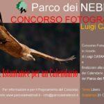 """""""Istantanee per un calendario"""", ultimi giorni per il concorso fotografico del Parco."""