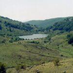 Piano forestale dei Nebrodi. Finanziamento per il progetto dell'Ats tra 13 comuni.
