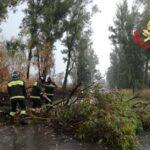 I danni del vento. Interventi dei Vigili del Fuoco a Sant'Agata, Acquedolci e Santo Stefano.