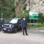 Incendio boschivo, arrestato 61enne operaio forestale.