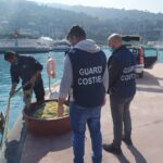 Sequestrati dalla Guardia Costiera attrezzi da pesca pericolosi per la navigazione.