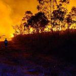 Sicilia, proclamato stato di allerta generale incendi. Ferie revocate per il Corpo forestale